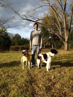 Jose is one of the professional dog trainers who have 12 years of industry experience. Check out his rave dog behavior training feedback on Thumbtack. Dog Walking Services, Pet Trainer, Dog Language, Pet Sitting, Dog Behavior, Rave, Trainers, New York, Wellness