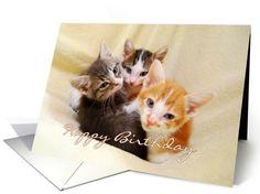 Happy Birthday Three Kittens card  #cats #kitten #Cat http://www.greetingcarduniverse.com/animals-pets-birthday-cards/cats/happy-birthday-three-kittens-688208?gcu=42967840600