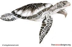 Sea Turtle Tattoo..