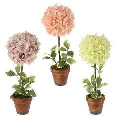 Sincerely Forever Inventory beautiful potted hydrangeas
