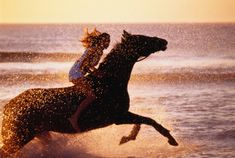 310396-002-girl-riding-horse-in-sea-creating-spray-gettyimages.jpg (505×339)