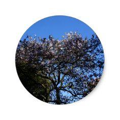 Star Magnolia Stickers - flowers floral flower design unique style