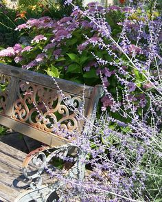 TI love the combination of the Russian Sage and the Hydrangea