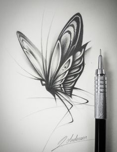 Butterfly drawing / page 1 of my new sketch book / Flower Sketch Pencil, Flower Art Drawing, Butterfly Sketch, Flower Sketches, Butterfly Tattoo Designs, Butterfly Art, Butterflies, Foot Tattoos, Skull Tattoos
