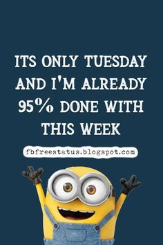 funny tuesday memes Happy Tuesday Meme, Happy Tuesday Morning, Tuesday Motivation Quotes, Its Only Tuesday, Motivational Quotes, Funny Quotes, Funny Happy, Morning Quotes, Study