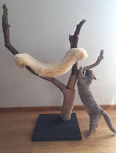 Meowjestic árbol del gato y rascador con ovejas hamaca de la