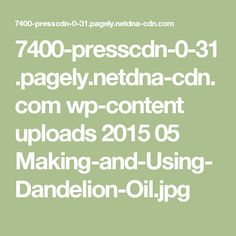 7400-presscdn-0-31.pagely.netdna-cdn.com wp-content uploads 2015 05 Making-and-Using-Dandelion-Oil.jpg