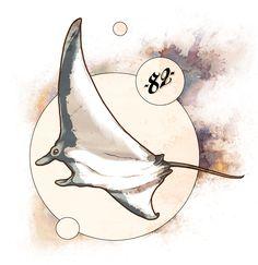 Sea Tattoo, Ocean Tattoos, Illustrations, Illustration Art, Manta Ray Tattoos, Stingray Tattoo, Animal Sketches, Inspirational Wall Art, Ocean Art