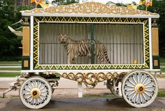 Chapter 2: The Circus- This is how I imagined Ren to look in the wagon the circus emplyees brought him out in the first time Kelsey saw him.#tcpinterest