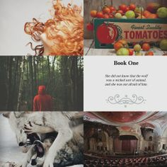 Scarlet (The Lunar Chronicles by Marissa Meyer! Ya Books, Good Books, Lunar Chronicles Books, Marissa Meyer Books, This Is A Book, A Series Of Unfortunate Events, Cinder, Book Fandoms, The Lunar Chronicles