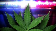 Medical marijuana patients could be ineligible to bear arms - WCTV