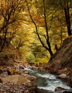Beautiful Nature Photos | Cruzine