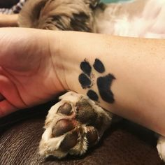 New Trend: Pet Owners Are Getting Tattoos of Their Dogs' Paw-fect Feet