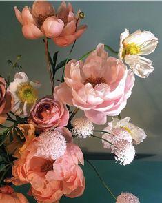 Incredible blooms seen through the artful eye of @doan_ly! Beyond inspiring! #sobridaltheory #florals