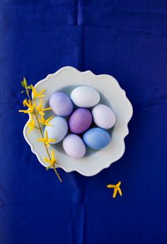 blue and purple eggs