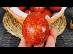 Cea mai buna forma de a vopsi oua natural | Bucatareste cu Rodica - YouTube Easter Traditions, Chocolate, Easter Eggs, Peach, Mai, Make It Yourself, Blog, Royals, Youtube