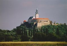 Nitra Castle in Slovakia Historical Monuments, Wonderful Places, Cool Places To Visit, Paris Skyline, The Good Place, Cool Pictures, Explore, Landscape, History