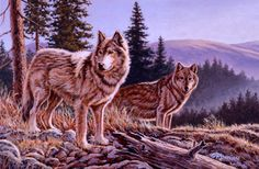 Wolves, wolf art, wildlife art by noted Canadian painter Richard De Wolfe.