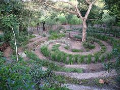 The labyrinth at Old Joe's Kaia, Schoemanskloof, South Africa