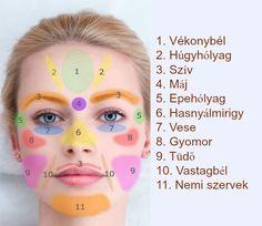 Ez nem semmi lehet: Ha ezeket a pontokat masszírozzuk az arcunkon, akk. Gout Remedies, Herbal Remedies, Natural Remedies, Beauty Care, Beauty Hacks, Ayurveda, Lose Thigh Fat, Face Mapping, Face Shape Hairstyles