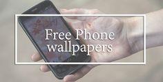 free phone wallpapers / fondos de pantalla gratuitos . Polaroids of Polar Bears - blog de fotografia y moda