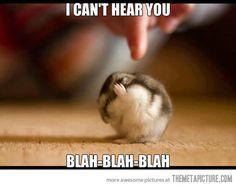Not listening…