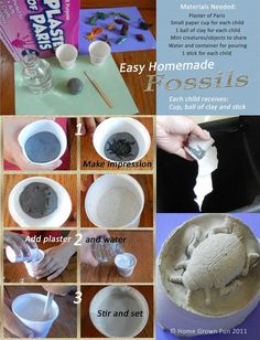 How to make homemade fossils- for the sensory table!