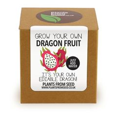 Grow Your Own Dragon Fruit Plant Kit by PlantsFromSeed on Etsy