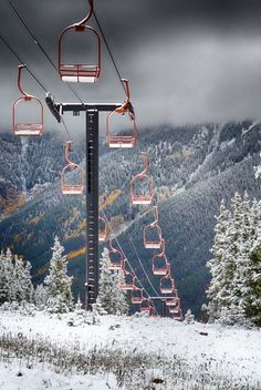 Snow is beginning to fall and we're getting pretty excited about it!