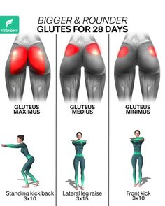 Helpful site charted glute workout at home Fitness Workouts, Gym Workout Videos, Gym Workout For Beginners, Fitness Routines, Fitness Workout For Women, Body Fitness, Glute Workouts, Fast Workouts, Fitness App