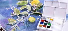 Koi® Water Color Field Sketch Travel Kit
