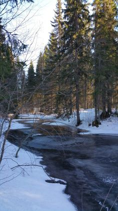 Tuopanjoki