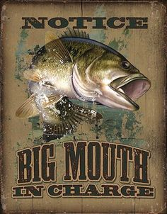 David Wenzel  -  Notice of a Largemouth Bass Fish
