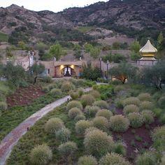 Quixote Winery. Location: Silverado Trail, (Napa Valley) California; firm: Friedensreich Hundertwasser; photo: Mariko / Quixote Winery; year: 1996.