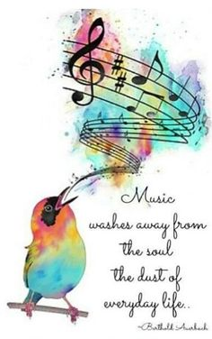 Music washes away the everyday...and my little Phoebe bird songbird. Display children starting point