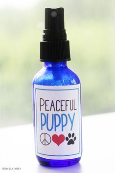 Make a DIY dog calming spray for your dog's bed, crate, or the car – anywhere you need to help your dog relax! Now with FREE printable labels. Perfect for anxiety in dogs, separation anxiety,. Dog Separation Anxiety, Dog Anxiety, Anxiety Tips, Dogs With Anxiety, Crate Training, Dog Training Tips, Training Schedule, Dog Calming Spray, Printable Labels