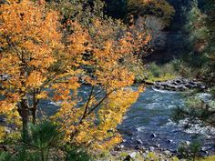 Oregon Top 5: Best hikes for autumn color in Columbia River Gorge