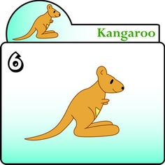 How To Draw the Kangaroo – Step by Step for Kids