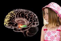 Jag har hört att hjärnan inte kan lagra minnen innan man är fyra år. Är det sant?