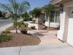 Rock landscaping and drought tolerant plants