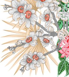 Flowers Nature, Tropical Flowers, Border Design, My Design, Flower Art, Art Flowers, Textile Design, Black And White, Abstract