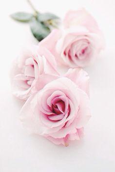 Shabby chici duydunuz mu? Romantic roses Magical times Romantik evim Romantik mobilya Romantik dekorasyon modelleri Romantik detaylar