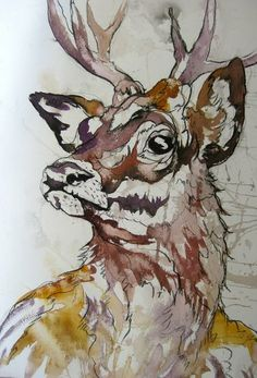 Stag by Amy Williams. Animal, Ink and Charcoal Illustration.
