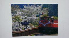 https://flic.kr/p/q5tkjA | Sakura an Train