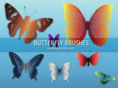 Butterfly Brushes | 775 to 2500px Free Download