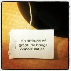 """"""" Une attitude de gratitude favorise les opportunités """" -wisdom from my morning tea Sagesse tirée de mon thé matinal ."""