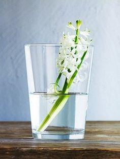 Arreglos florales para bodas: ¡Ideas para hacerlos tú!