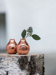 A special vase to add to the collection that is sure to impress. The organic shape of this copper vase mimics the flowers or plants that go inside creating a stunning look. Copper Blush, Home Goods Decor, Decor, Inspiration, Shiny Objects, Home Goods, Copper Decor, Copper Vase, Home Decor