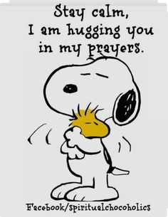 Details about Peanuts Snoopy Woodstock HUG! T shirt Iron on Transfer or light fabric - Peanuts Quotes, Snoopy Quotes, Hug Quotes, Life Quotes, Qoutes, Charlie Brown Snoopy, Great Quotes, Inspirational Quotes, Snoopy Pictures
