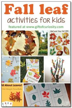 Fall leaf activities for kids || Gift of Curiosity